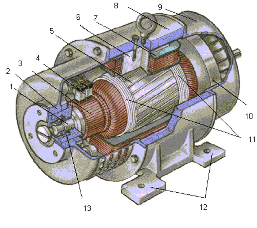 Рисунок 6 Устройство машины постоянного тока.  1 - вал якоря; 2 - передний подшипниковый щит; 3 - коллектор; 4.